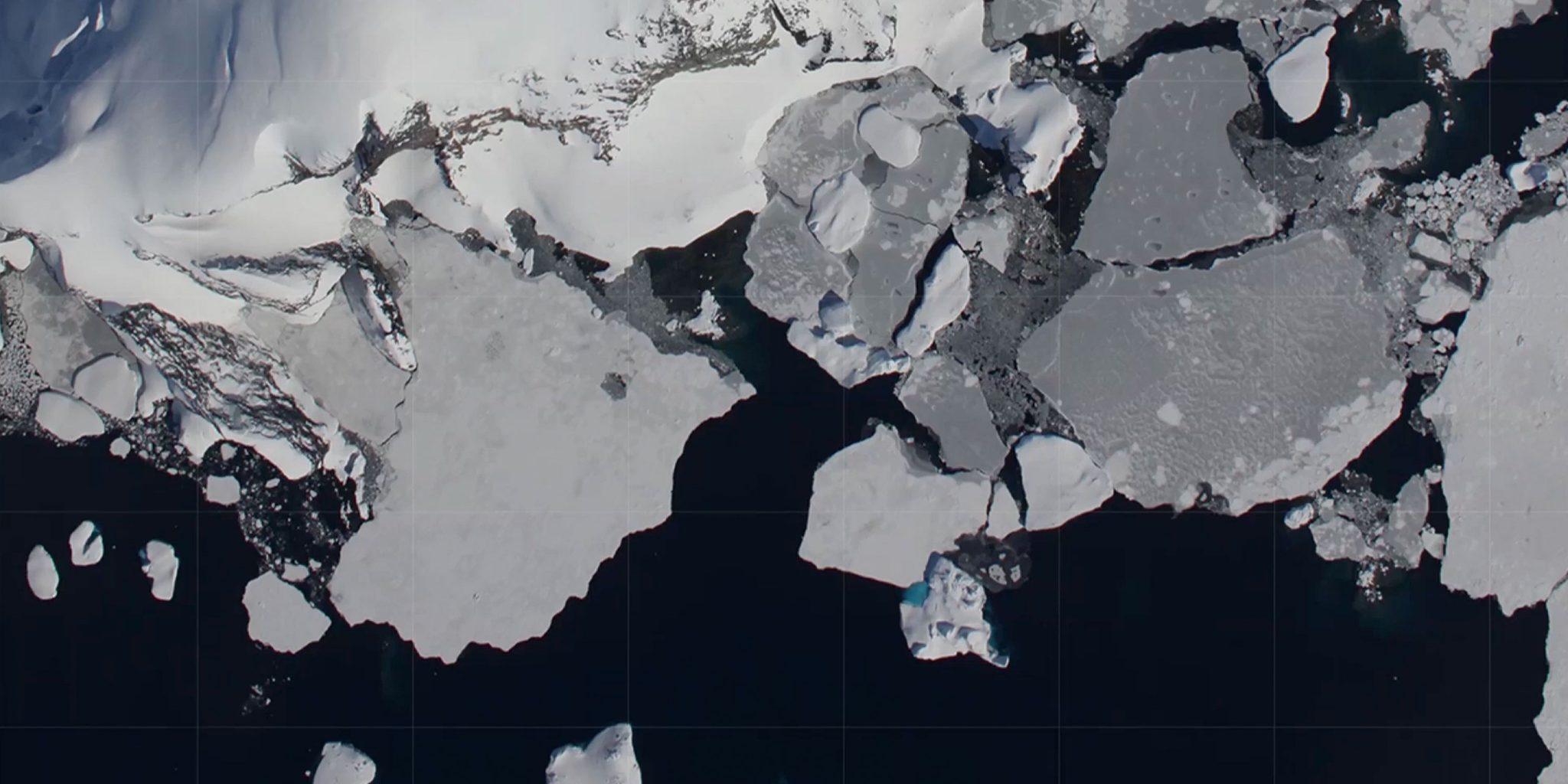 Polar Field